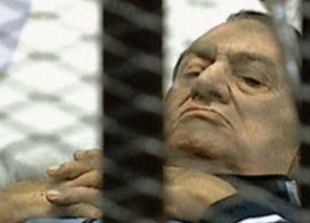 کاخ نشینی که وارد قفس شد + عکس