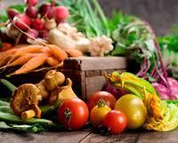 رعایت تغذیه سالم وانجام ورزش در زمان بارداری توصیه می شود
