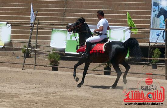 مسابقات زیبایی اسبان اصیل بومی فلات ایران- رفسنجان (16)