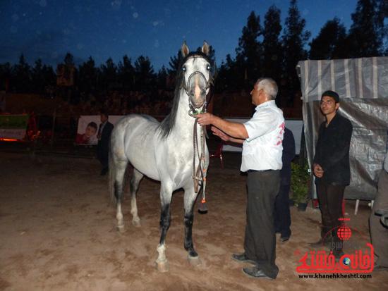 مسابقات زیبایی اسبان اصیل بومی فلات ایران- رفسنجان (23)