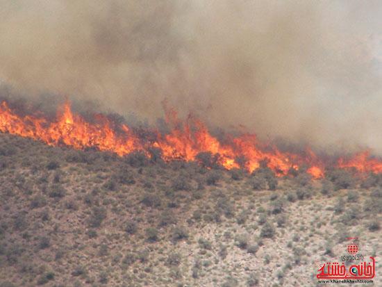 آتش سوزی ۲۰۰ هکتار پوشش گیاهی در راویز رفسنجان بر اثر بی احتیاطی + تصاویر