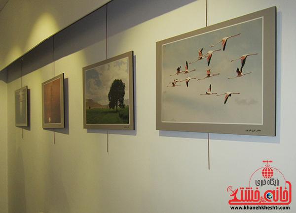 افتتاحیه نمایشگاه عکس بمناسیت هفته فیلم و عکس5