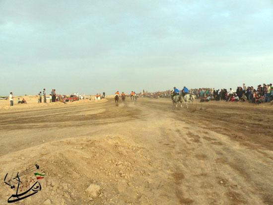 برگزاری مسابقات کورس سوارکاری بهاره ۹۳ در رفسنجان (5)