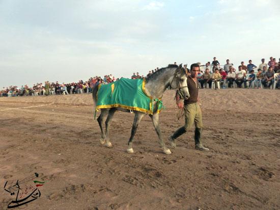 برگزاری مسابقات کورس سوارکاری بهاره ۹۳ در رفسنجان