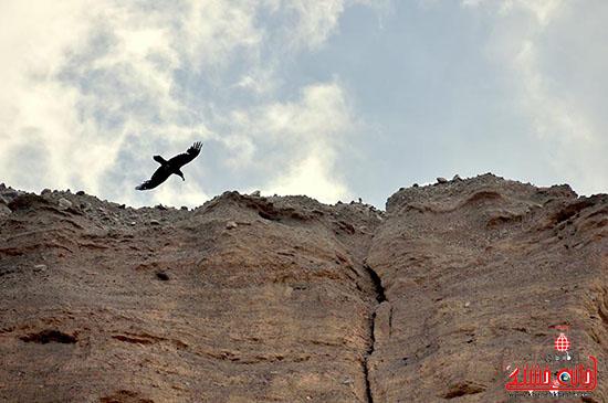 دره راگه  یکی از منحصربفرد ترین دره های کشور در رفسنجان-خانه خشتی.jpg (6)