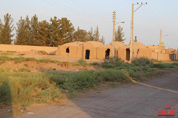 روستای احمدآباد رضوی رفسنجان24