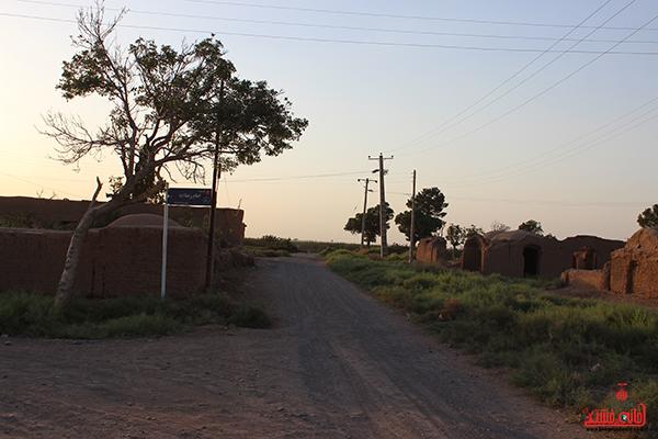 روستای احمدآباد رضوی رفسنجان25