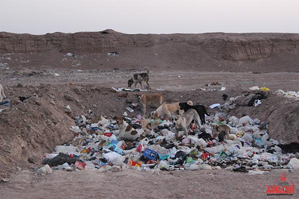 روستای احمدآباد رضوی رفسنجان38