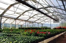 افتتاح ۵ طرح کشاورزی با اعتبار بیش از ۲۰ میلیارد ریال در رفسنجان