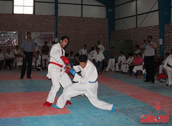 مسابقات کاراته جام صلح و دوستی در رفسنجان (4)