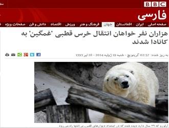 """نگرانی """"BBC"""" برای خرس غمگین!/شهادت کودکان فلسطینی با موشکهای اسرائیلی"""