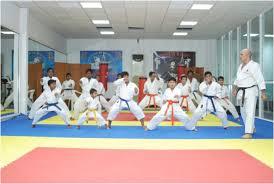 حضور پنج کاراته کای رفسنجانی در تیم 7 نفره استان در مسابقات کشوری