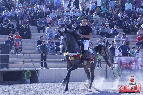 اولین جشنواره شو سواره اصیل اسبان بومی فلات ایران در رفسنجان