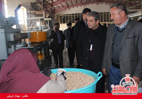 بازدید تجار ترکیه از پسته رفسنجان6