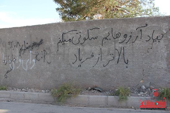 گزارش تصویری/ یادگاری های دیواری رفسنجان