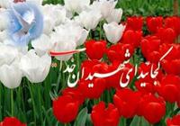 یادواره شهدای دانشجوی شهرستان رفسنجان برگزار شد