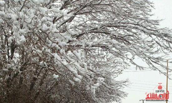 برف زمستانی از دوربین مخاطبین سایت خانه خشتی