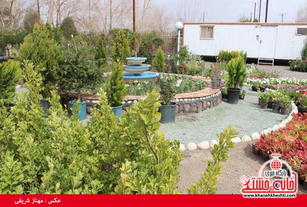 نمایشگاه بهاره گل و گیاه رفسنجان-خانه خشتی