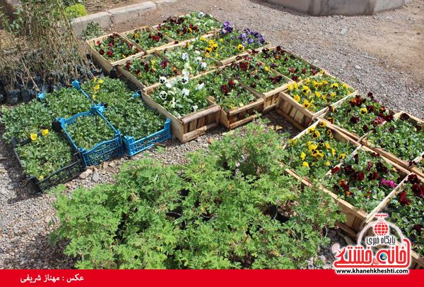 نمایشگاه بهاره گل و گیاه رفسنجان-خانه خشتی۱۲