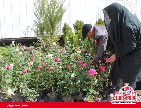 نمایشگاه بهاره گل و گیاه رفسنجان-خانه خشتی۱۸