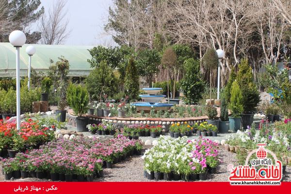 برپایی نمایشگاه گل و گیاه در نهالستان شهرداری