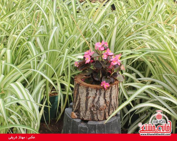نمایشگاه بهاره گل و گیاه رفسنجان-خانه خشتی۶