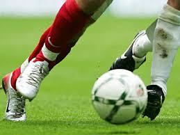 با واگذاری فوتبال به بخش خصوصی می توان از سایر رشته های ورزشی حمایت کرد