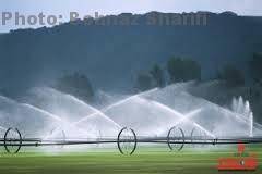 پروژه آبیاری بارانی بر روی محصولات زراعی به بهره برداری رسید