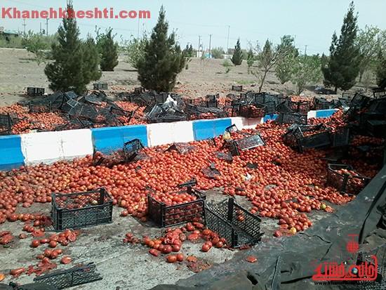چپ کردن کامیون بار گوجه در رفسنجان-خانه خشتی (۲)