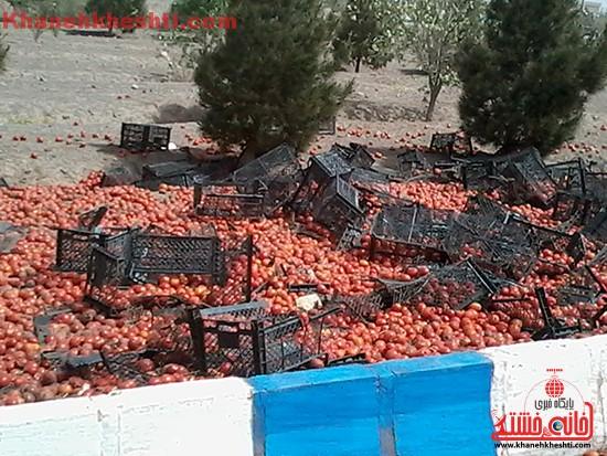 چپ کردن کامیون بار گوجه در رفسنجان-خانه خشتی (۵)