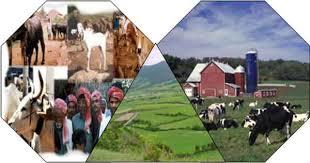 با هماهنگی، همکاری و برنامه ریزی به فعالیت های اقتصادی در زمینه منابع طبیعی دست یابیم