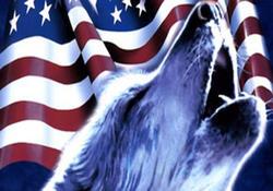 آیا ما اولین کشوری خواهیم بود که به دست آمریکای گرگ صفت خوشبخت خواهیم شد؟!!