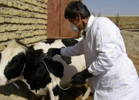 افتتاح هفتمین مرکز درمانی و مایه کوبی در شهرستان رفسنجان