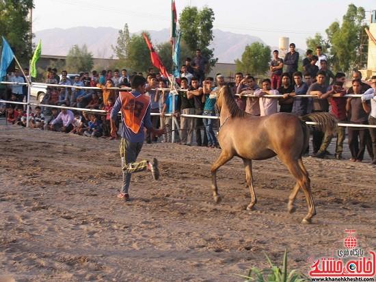 شو اسب سواره شهر صفائیه-رفسنجان-خانه خشتی (۱۵)