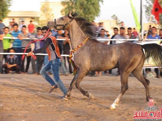 دوربین خانه خشتی در اولین شو اسب سواره اصیل فلات ایران در شهر صفائیه