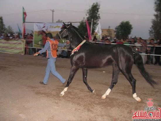 شو اسب سواره شهر صفائیه-رفسنجان-خانه خشتی (۱۸)