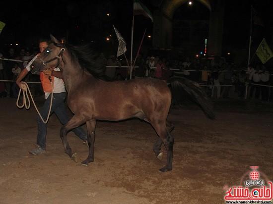 شو اسب سواره شهر صفائیه-رفسنجان-خانه خشتی (۱۹)