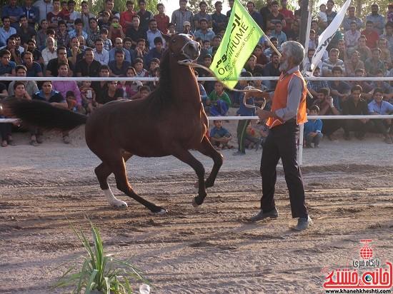 شو اسب سواره شهر صفائیه-رفسنجان-خانه خشتی (۵)