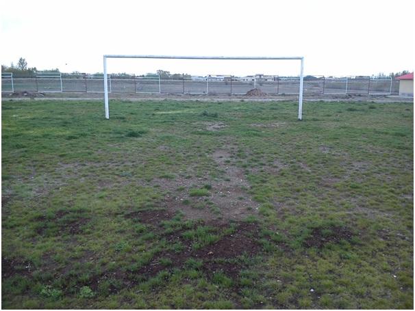 مدرسه فوتبال رفسنجان بخشی از بازیکنان باشگاه مس را تغذیه می کند/ وضعیت چمن مصنوعی مجموعه ورزشی انقلاب مناسب نیست