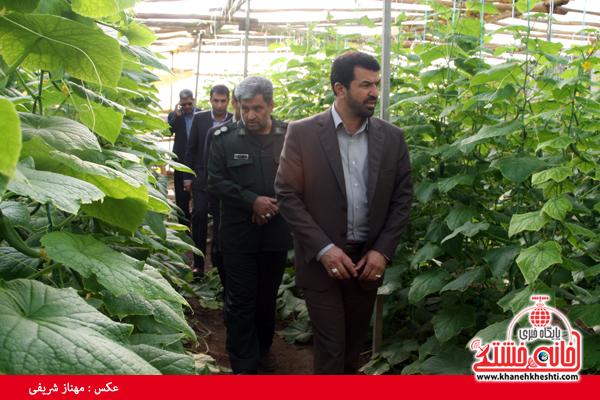 دو طرح کشاورزی در روستای ناصریه رفسنجان به بهرهبرداری رسید+عکس