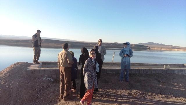 سرگردانی گردشگران در بدو ورود به دریاچه شور جوادیه فلاح