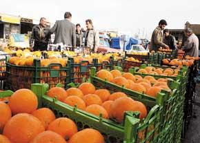 ۴۵۰ تن پرتقال و سیب مورد نیاز شب عید در شهرستان رفسنجان پیش بینی شده است