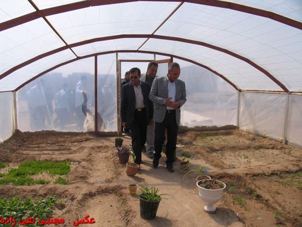 گلخانه آموزشی هنرستان حضرت ابوالفضل(ع) شهر بهرمان به بهره برداری رسید / عکس