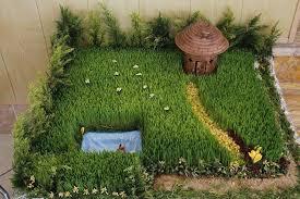کاشت یک نهال به جای هدر دادن گندم های سبزه نوروزی