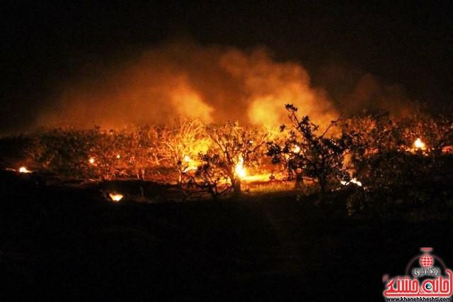 مقابله با سرمازدگی درختان پسته_رفسنجان_خانه خشتی (۱۰)