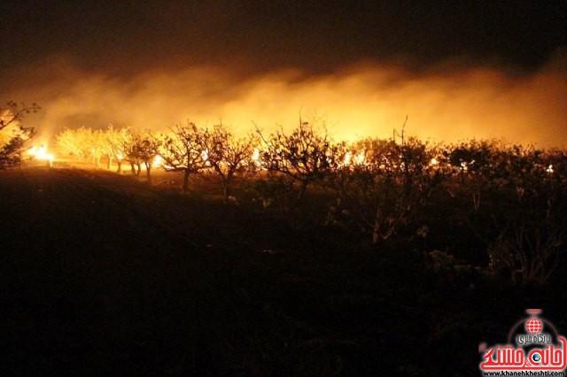 مقابله با سرمازدگی درختان پسته_رفسنجان_خانه خشتی (۶)