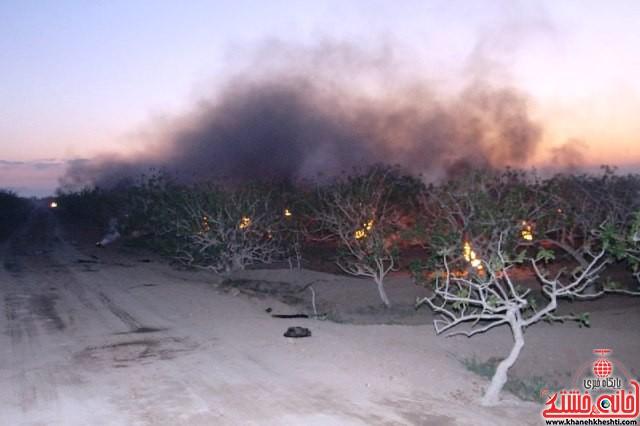 مقابله با سرمازدگی درختان پسته_رفسنجان_خانه خشتی (۹)