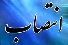 بانوی اتومبیلران رفسنجانی به عنوان دبیر هیئت کرمان منصوب شد
