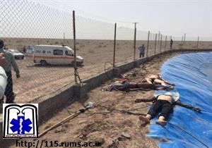 کشته شدن ۳ افغان دراستخر