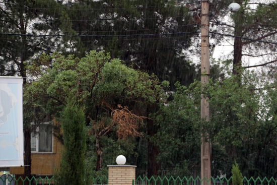 باران دیروز به خاطر من آمد